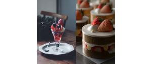 草莓控看過來!冬季必嚐大人系草莓甜點 ~ 從蛋糕到冰品,「一口吃到日本四個產地草莓的聖代」、 「七層草莓巧克力蛋糕」,挑戰味蕾夢幻指數
